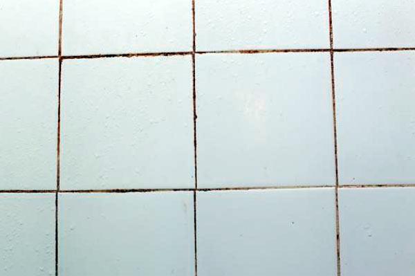 limpiar uniones baldosas del baño